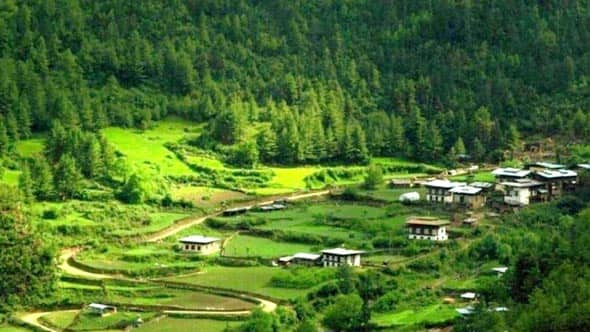 Bhutan Tour Plan for 6Nights and 7Days, Day6: Visit To Chelela Pass And Haa Valley